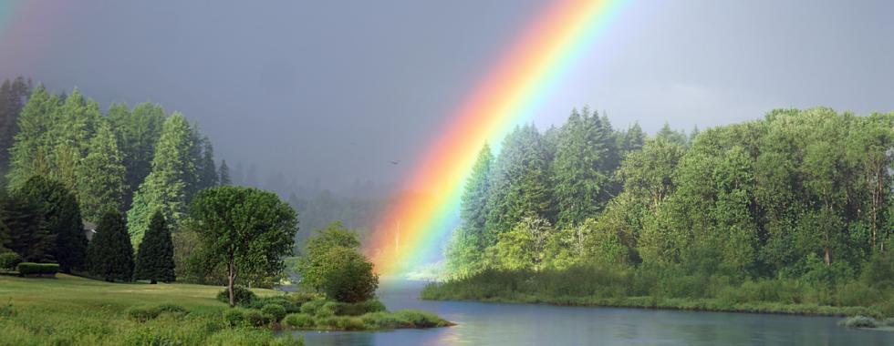 Rainbows-2021-new-year-prayer